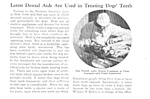 1935 LATEST DOG DENTAL AIDS Veterinarian Mag. Article (Image1)