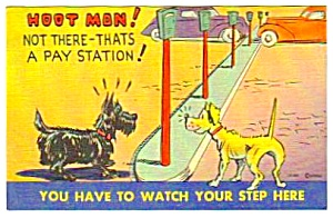 1940s SCOTTIE DOG Linen Humor POSTCARD (Image1)