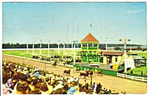 1959 CHARLOTTETOWN DRIVING PARK Horseracing Postcard (Image1)