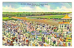 1944 TROPICAL PARK Horse Racing, Florida Postcard (Image1)