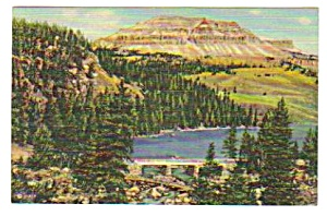 1949 Yellowstone National Park Bridge Postcard