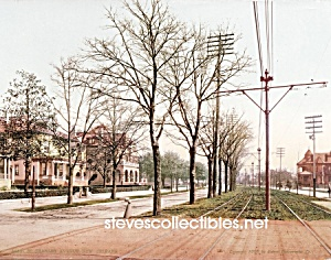 c.1900 NEW ORLEANS, St Charles Avenue Photo - 8 x 10 (Image1)