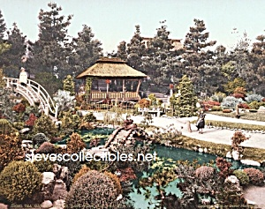 c.1900 SAN FRANCISCO Tea Garden-Golden Gate Park Photo (Image1)