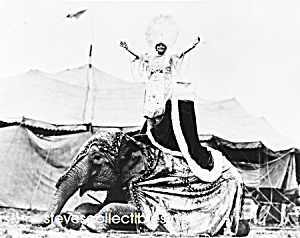 1923 Woman On Elephant, Al G. Barnes Circus - Photo