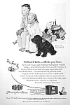 Click here to enlarge image and see more about item AD0628B1: 1950 NORMAN ROCKWELL Cocker Spaniel Dog Ad