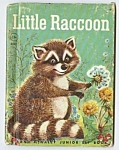 Click here to enlarge image and see more about item CHB0524RR4: LITTLE RACCOON Jr.. Elf Book
