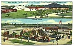 Click here to enlarge image and see more about item CI0722A1: 1954 FLA Barnum/Bailey CIRCUS Postcard