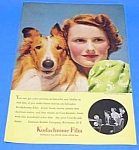 Click here to enlarge image and see more about item DG1009A1B: 1940 COLLIE DOG Color Magazine Ad
