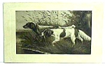 Click here to enlarge image and see more about item DG1130B2: Early HUNTING DOGS Postcard