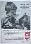 Click here to enlarge image and see more about item DG326A1: 1957 BEAGLE DOG Magazine Ad L@@K!