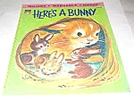 Click here to enlarge image and see more about item MCHBK1227J8: HERE'S A BUNNY Real Cloth Children's Book - 1970