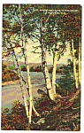 1949 WHITE MOUNTAINS New Hampshire Linen Postcard
