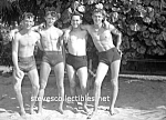 Vintage Hot Photo: Four Shirtless BEACH BOYS - GAY INT.
