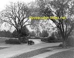 c.1914 BOSTON, MASS Arborway - Photo - 8 x 10