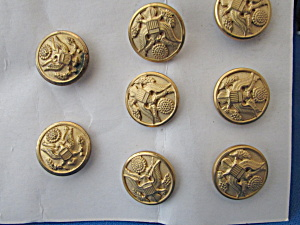 Eight Metal Military Buttons