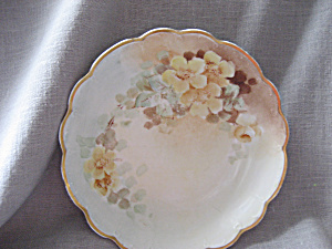 Hand Painted Austrian Dish (Image1)