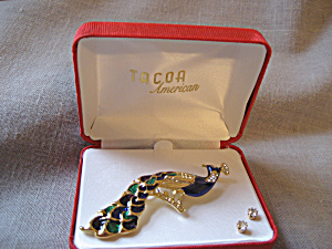 Tacoa Peacock Pin and Earrings (Image1)