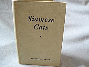 Siamese Cats (Image1)