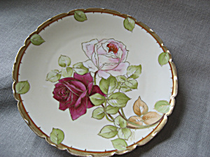 Hand Painted Bavarian Plate