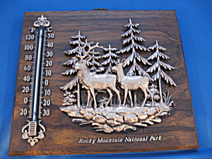 Rocky Mountain National Park Thermometer