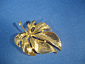 Faux Gold Leaf Brooch (Image1)
