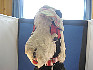 1940 Scottish Carnival Stuffed Dog (Image1)