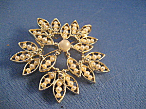 Faux Pearl Star Brooch (Image1)