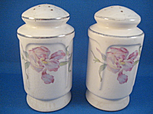 Old Porcelain Salt and Pepper Shakers (Image1)