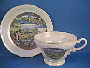 Estes Park Cup And Saucer