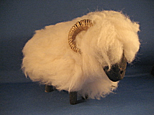 Black Face Ram From Scotland