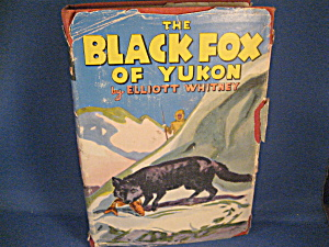 The Black Fox Of Yukon