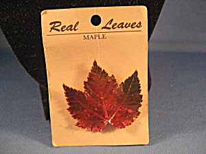 Real Maple Leaf Pin