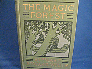 The Magic Forest, A Modern Fairy Story