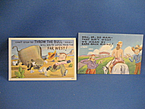 Two Sanborn Cartoon Postcards