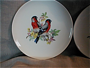 Two Kaiser Bird Plates (Image1)