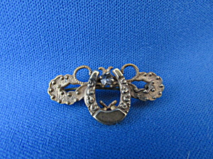 Victorian Horse Shoe Pin (Image1)