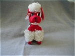 Red Dream Pet Poodle