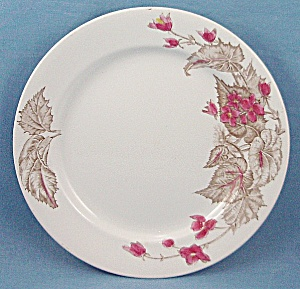 Alfred Meakin � English Ironstone � Decorated Plate (Image1)