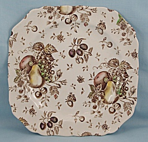 Johnson Brothers - Autumn's Delight -square Salad Plate