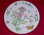 Click here to enlarge image and see more about item TE0021: 10-Inch Ironstone Plate � W/ Decorations
