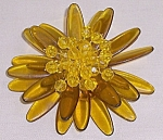 Click here to enlarge image and see more about item TE1153: Apple Juice Lucite Brooch