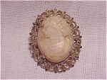 Click to view larger image of VINTAGE CARVED SHELL OR STONE CAMEO BROOCH IN GOLD TONE FILIGREE (Image1)