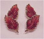 VINTAGE BROWN THERMOSET FALL LEAF GOLD TONE CLIP EARRINGS