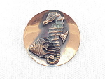 Click here to enlarge image and see more about item 07J2947: VINTAGE COSTUME JEWELRY -  COPPER SEAHORSE AND FISH BROOCH OR PIN