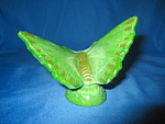 Click here to enlarge image and see more about item 5296HB: Fenton Chameleon Green Butterfly