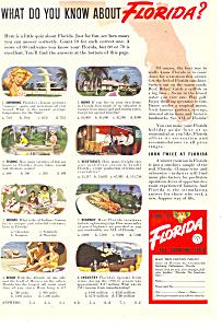 Florida Tourism  Ad ad0292 (Image1)