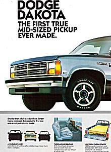 1986 Dakota (Image1)