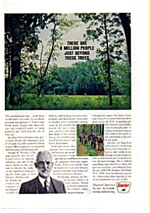 Sinclair Oil Cook County Forests Ad (Image1)