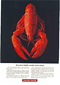 Parke Davis Allergy Ad auc1819 (Image1)