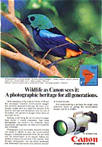 Canon Wildlife Series Ad 7-Colored Tanager (Image1)